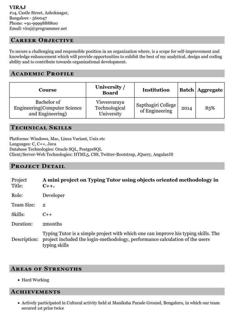 Resume Template 11